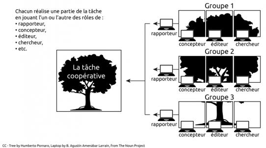 cooperatio
